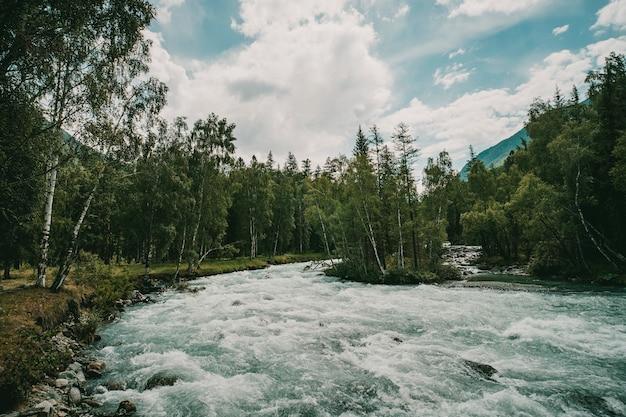 Les eaux cristallines à débit rapide de la rivière au début du printemps. la rivière de montagne coule dans la forêt. beau paysage de la faune.