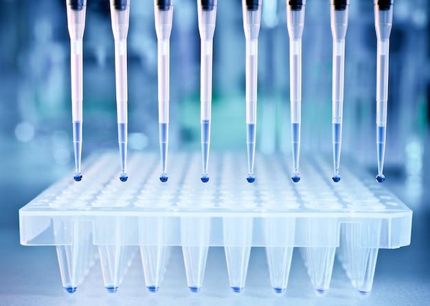 Des échantillons d'adn et une plaque pour l'analyse pcr