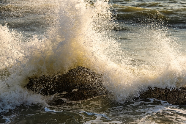 Éclaboussures de vague sur la mer le matin