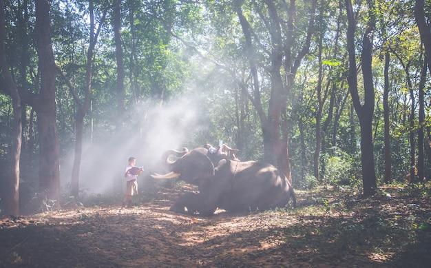 Écolier jouant dans la jungle avec son ami éléphant