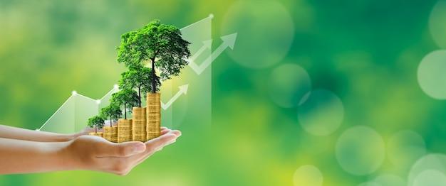 Économie d'argent investissement planification familiale croissance de l'argent succès commercial concept