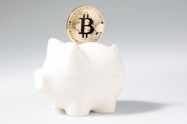 Économiser des bitcoins dorés grâce à l'investissement dans la crypto-monnaie tirelire
