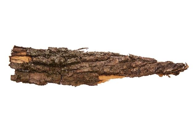 L'écorce de l'arbre est isolée sur fond blanc. texture en bois