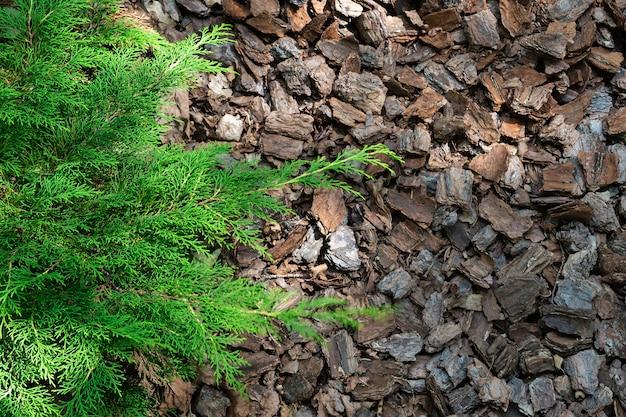 Écorce de bois de paillage biologique alpine.
