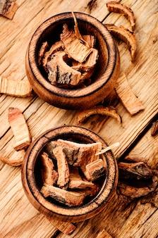 Écorce de chêne sèche