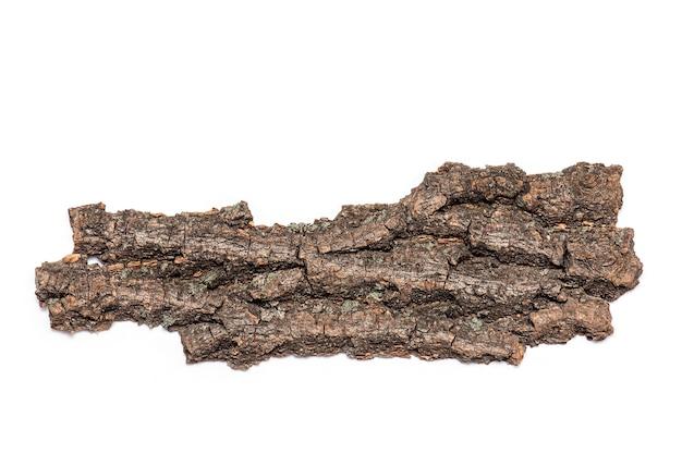 Écorce ou croûte d'arbre ancien sec isolé sur fond blanc