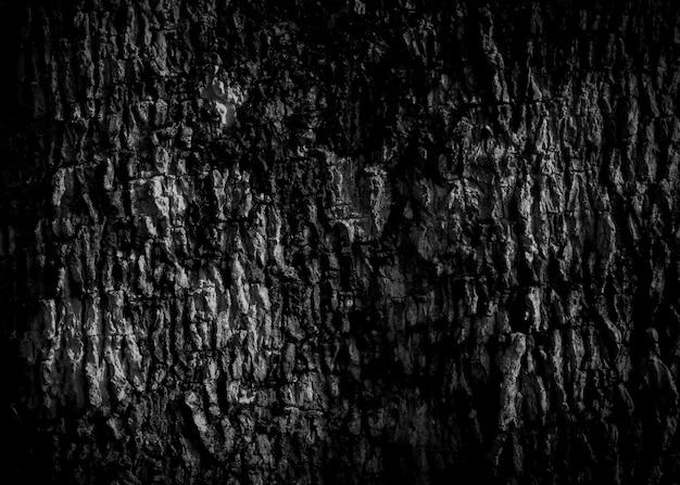 Écorce noire fond vieille écorce