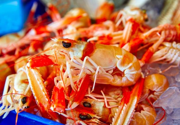 Écrevisses de la mer méditerranée au marché aux poissons de javea