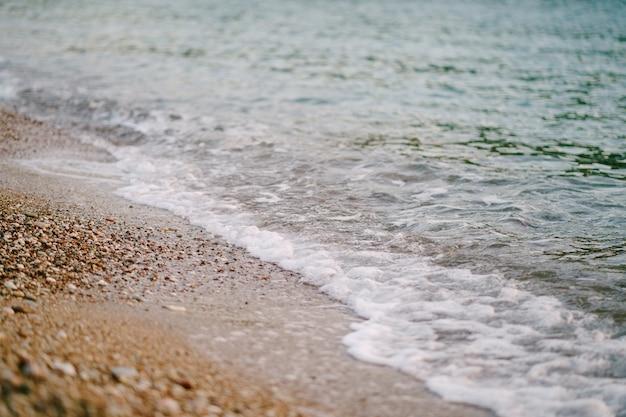 Écume de mer sur le sable sur la plage