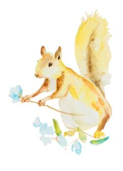 Écureuil avec fleur isolée
