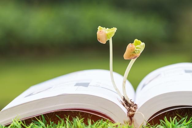 Education agriculture pour l'apprentissage