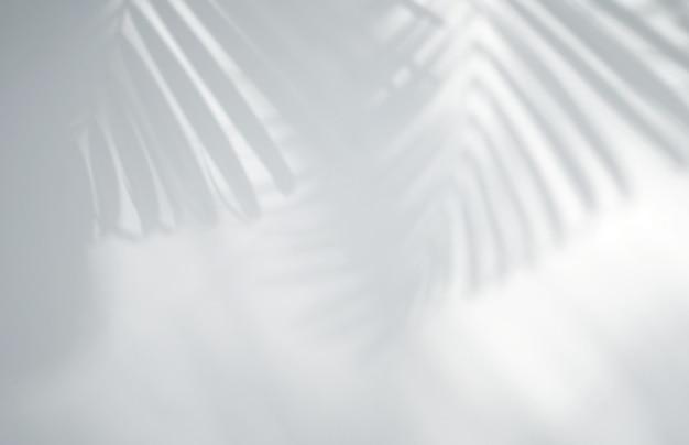 Effet de superposition d'ombre de feuilles tropicales réalistes sur mur blanc
