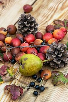 Églantier poire d'automne. récolte d'automne
