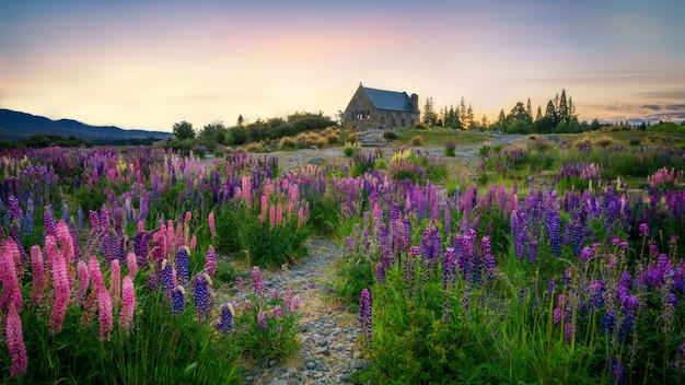 Église du bon pasteur, tekapo, nouvelle-zélande