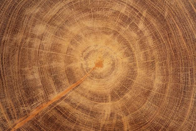 Élément de design de fond de texture de bois dur