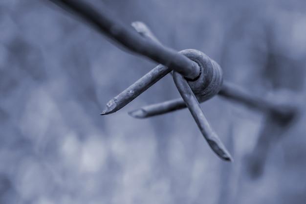 Élément de fil de fer barbelé en gros plan photo tonique