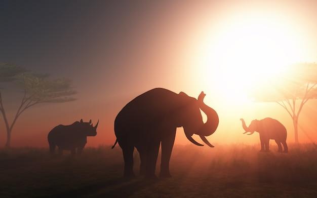 Elephant au coucher du soleil