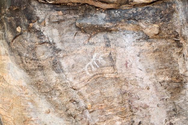 Éléphant de peintures anciennes sur pierre au parc national op luang, chiang mai, thaïlande
