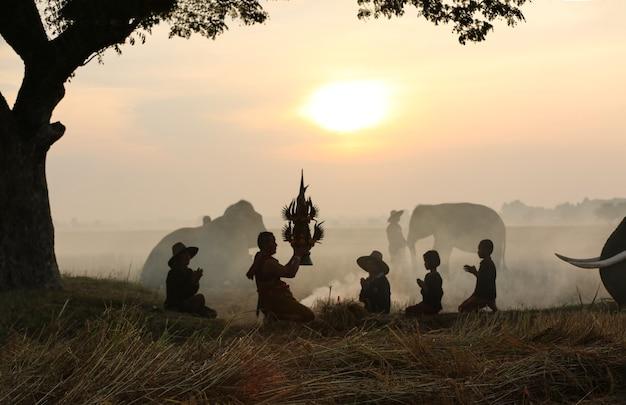 Éléphant de silhouette sur le fond de sunsetelephant thai à surin en thaïlande