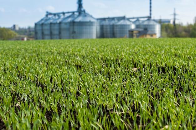 Élévateur à grain agricole près du champ