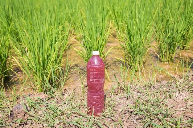 Em (effective micro oroanism), extrait bio, bouteille faite maison pour l'agriculture