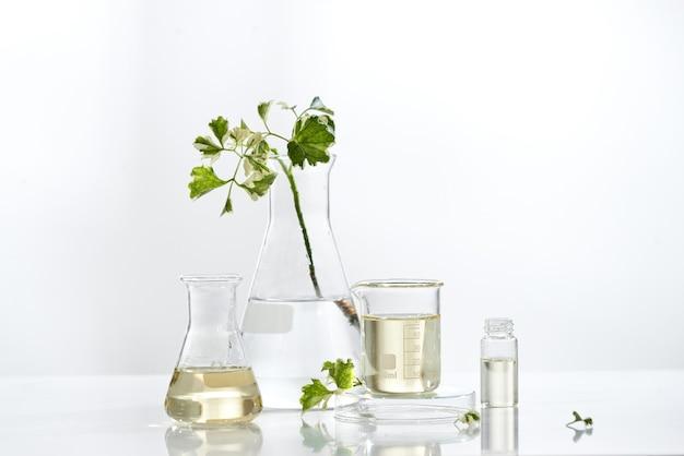 Emballage de sérum de soin de la peau cosmétique naturel avec feuille, huile faite maison et ingrédient de vitamine de beauté. recherche de produit organique le conteneur de bouteille vierge, bioscience. médecine douce. spa.