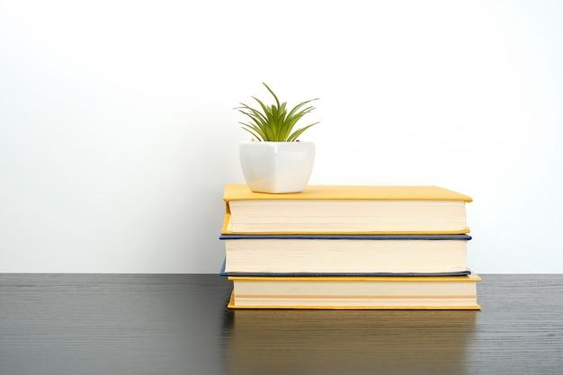 Empiler des livres sur une table noire, sur un pot en céramique avec une plante verte