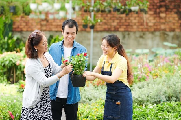 Un employé de centre de jardinage assez souriant aide le client à trouver des fleurs pour l'arrière-cour