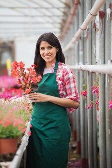 Employé de jardinerie debout et tenant le pot de fleur