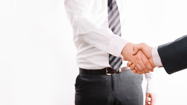 Employés de bureau se serrant la main