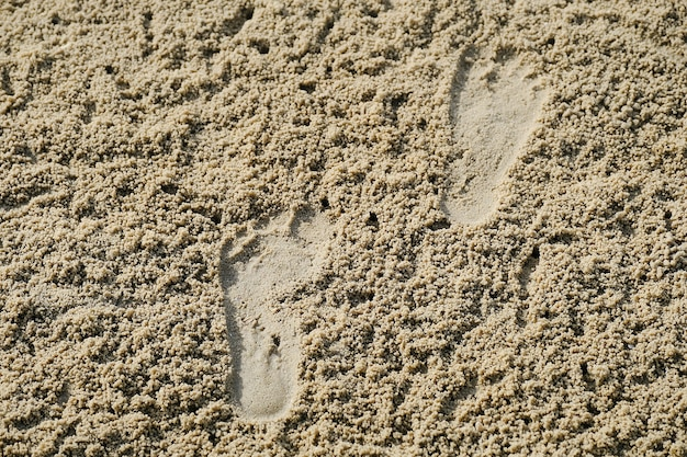 Empreinte sur la plage de sable