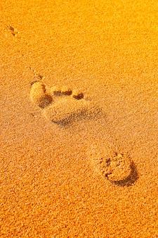 Empreinte sur la plage