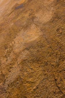 Empreintes de dinosaures sur pierre