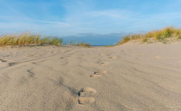 Des empreintes humaines dans le sable, sur la mer baltique.