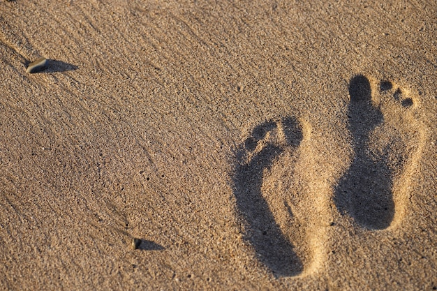 Empreintes humaines sur la plage de sable