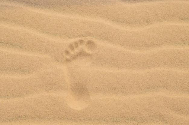 Empreintes de pas dans le désert ou sur le sable de la plage