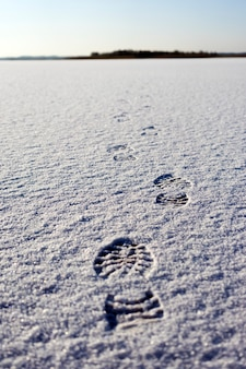 Empreintes de pas dans la neige