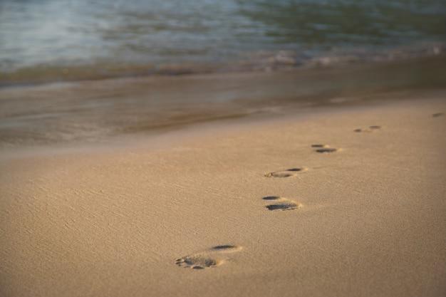 Empreintes de pas dans le sable au bord de la mer