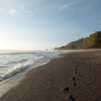 Empreintes de pas dans le sable le long de la côte de la côte rica