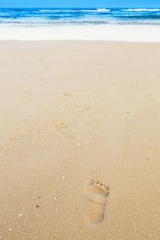 Empreintes de pas sur la plage de sable