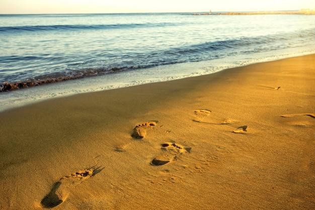 Empreintes de pas sur le sable humide du bord de mer