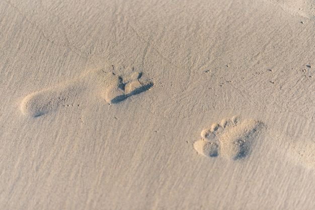 Empreintes de pas sur le sable de la plage avec la lumière du soleil