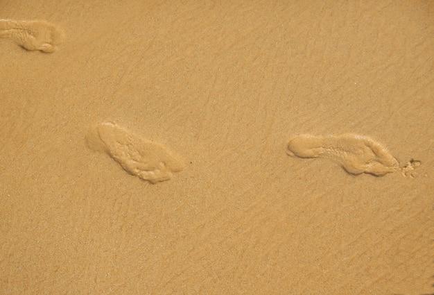 Empreintes de pas sur le sable de la plage un matin d'été