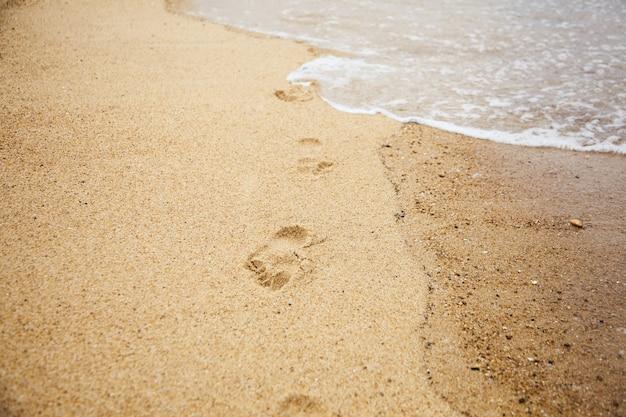 Empreintes de pieds nus sur la plage de sable humide. promenez-vous le long du bord de mer. concept: crise du tourisme