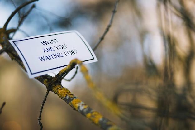 Encourager l'écriture sur une branche