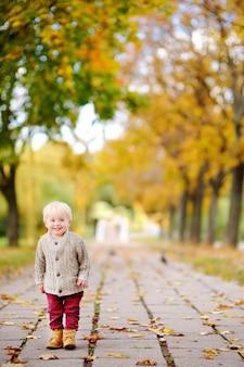 Enfant en bas âge se promenant dans le parc à l'automne. petit garçon profiter d'une journée ensoleillée