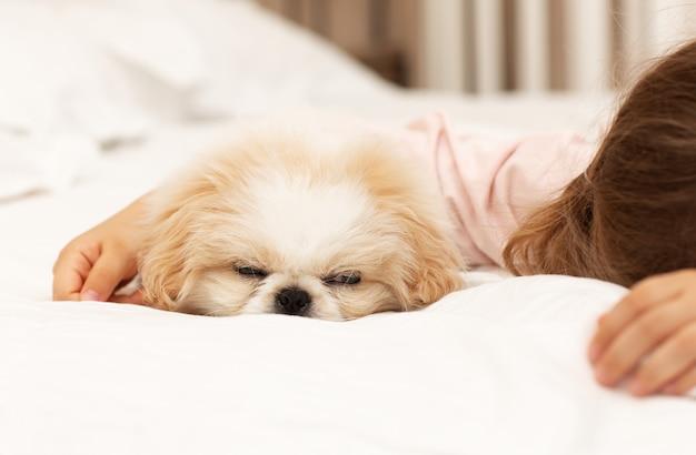 L'enfant et le chiot dorment sur un lit blanc confortable à la maison le matin amitié entre l'animal et les enfants
