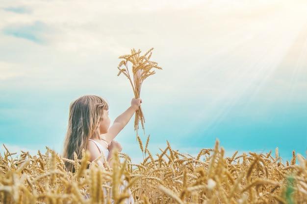 Enfant dans un champ de blé. mise au point sélective.