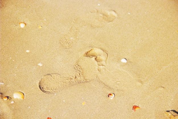 Enfant dans la mer mise au point sélective. la personne.