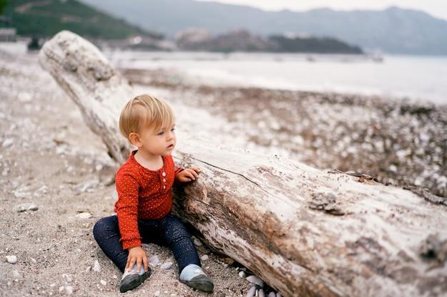 L'enfant est assis sur une plage de galets près d'un vieux bois flotté et regarde la mer